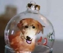 Golden Retriever Hand painted Ornament