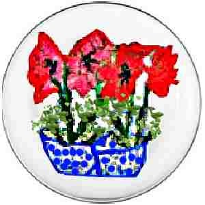 Hand painted Dinner Plates Amaryllis Design