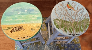 Hand painted Stools For Your Kitchen Or Bar